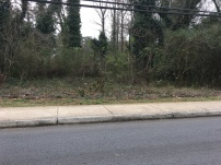 City of Decatur and The Path Foundation using pesticides