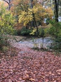 Dearborn Park Friends of Dearborn Park Shoal Creek