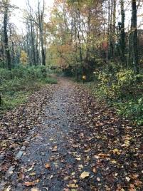 Trails Autumn in Dearborn Park 1301 Deerwood Drive Decatur City of Decatur Park DeKalb County Parks & Rec Friends of Dearborn Park
